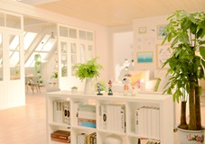 名匠优品装饰分享暮春时节适合养在家里的绿植!
