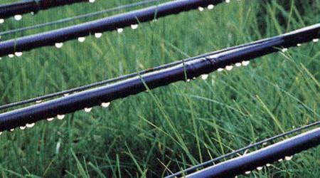 水肥一体化灌溉制度